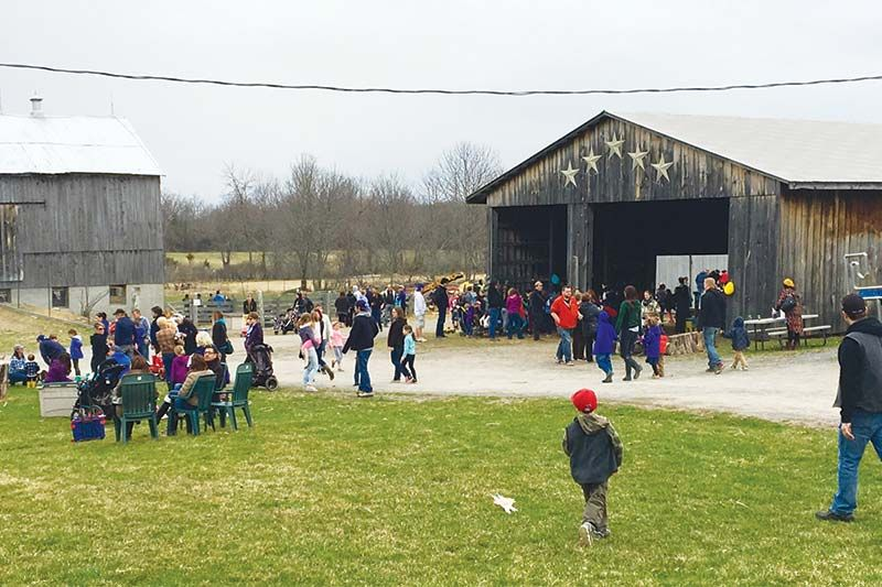 5 Star Farm draws an Easter Crowd