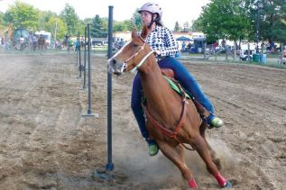 Parham Fair celebrates the past and looks to the future