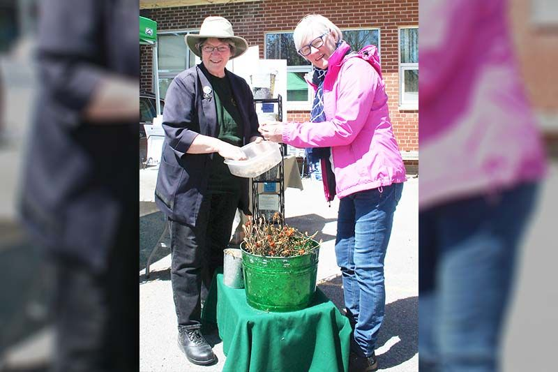 Dianne Dowling and Nancy Roantree were at the Frontenac Farmers Market opening to drum up support for the Kingston Area Seed System Initiative. The seeds they're packaging up here are dwarf french marigolds. Photo/Craig Bakay