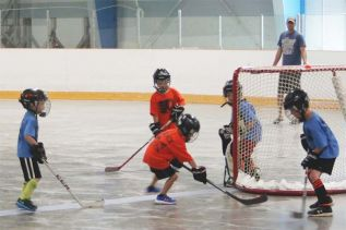 Part of the attraction to to Ball Hockey Fun Day was, well, playing ball hockey. Photo/Craig Bakay